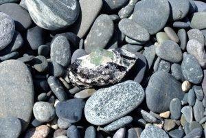 gem stone among pebbles